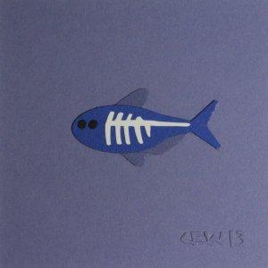 fish xray art